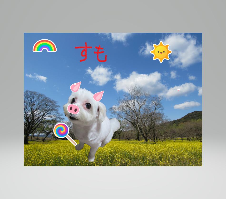 Photo_20200223175401