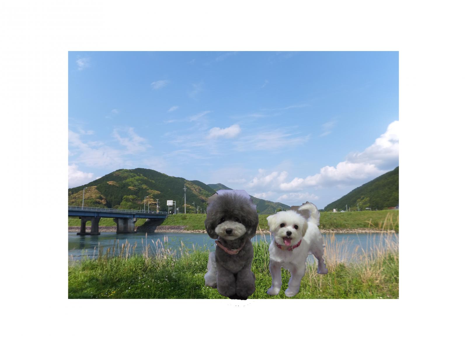 Photo_20200223175601
